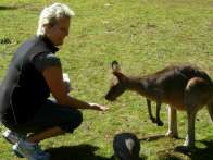 Ann-Sofie hand feeds a Kangaroo at Cooberrie Park